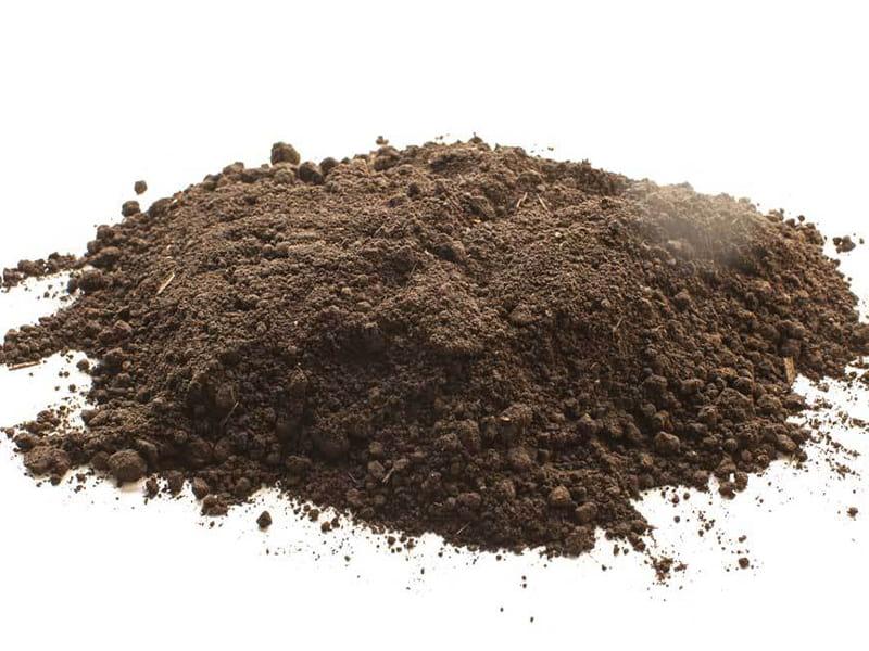 خاک پوششی قارچ