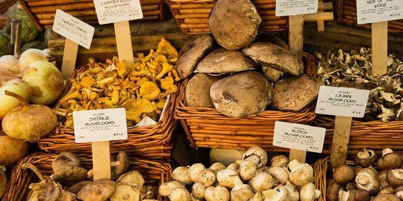 چه-قارچی-بخریم
