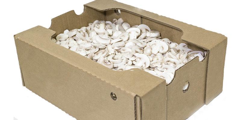 قارچ-اسلایس-جعبه-ای-فله