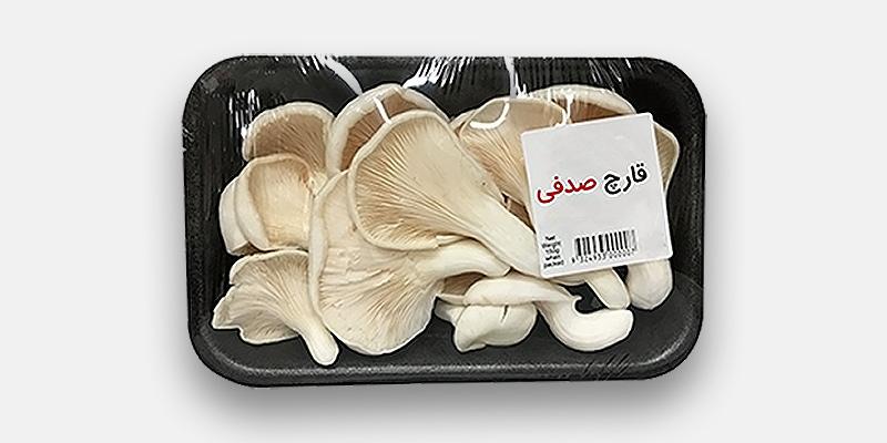 oyster mushroom parsigharch